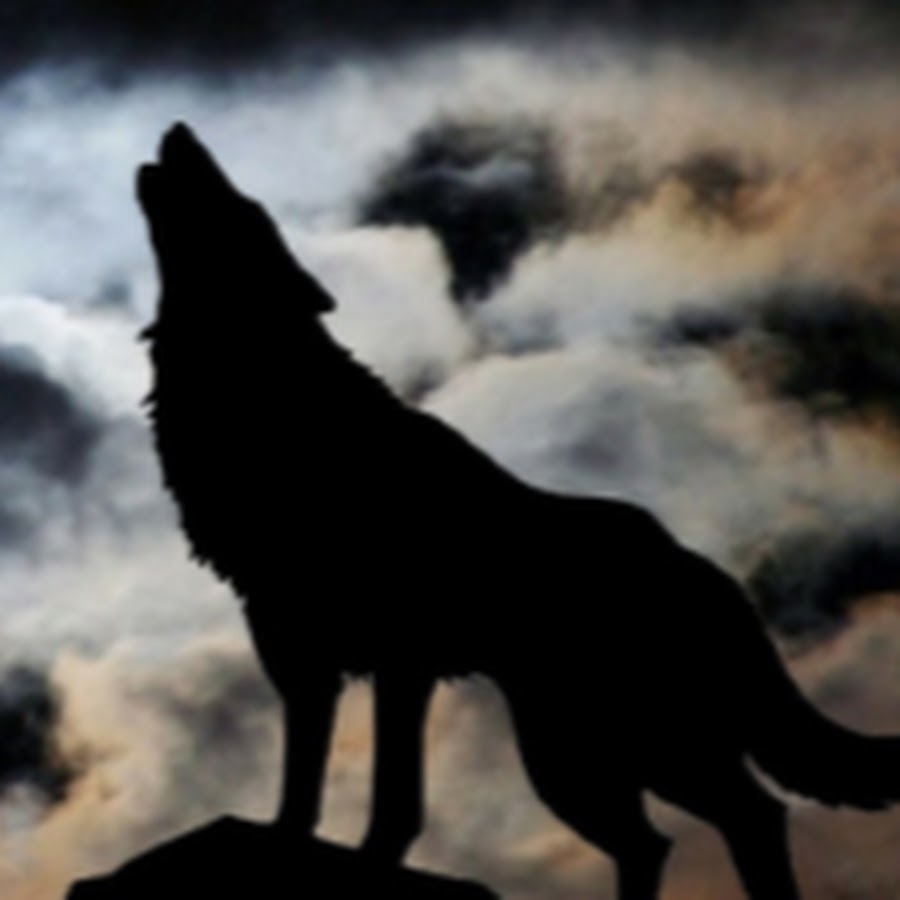 Warriors Rise To Glory Vsetop: LoneWolf