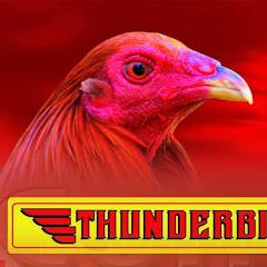 Thunderbird Unahco