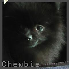 Chewbiex9