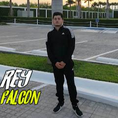 Rey Falcon