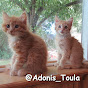 Adonis & Toula's Love