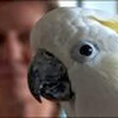 BirdLoversOnly