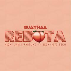 Guaynaa TV