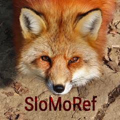 SloMo Ref