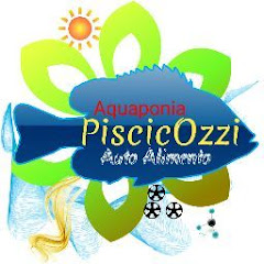 Aquaponia PiscicOzzi