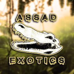 AssadExotics