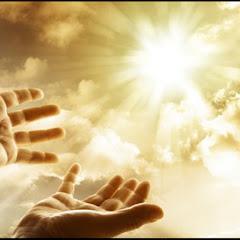 Flavia Vallega