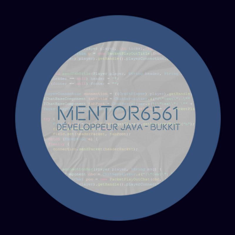 youtubeur mentor6561