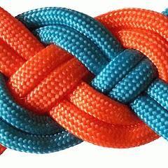 Bestknot