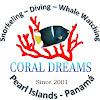 Coral Dreams Tours