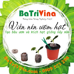 Công Ty BaTriVina