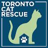 TorontoCatRescue