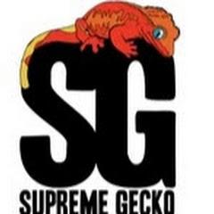 Supreme Gecko