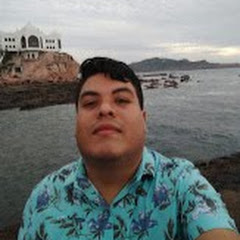 Reynaldo Martin del Campo Godinez