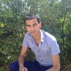 Ali Alshammary