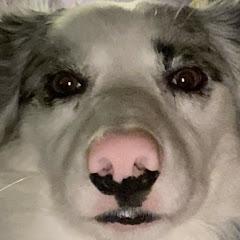 AdeftTV
