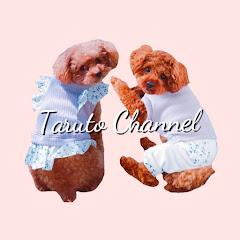 Taruto Channel