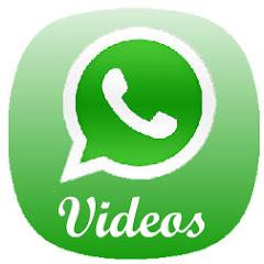 Videos do Whatsapp