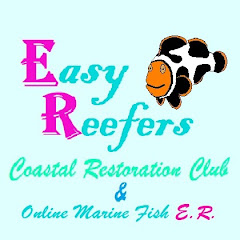 EasyReefers