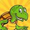 Savvy Turtle
