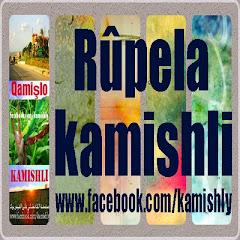 kamishli page