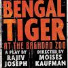 BengalTigerBway