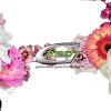 G-Fresh Flowers