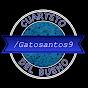Gatosantos9
