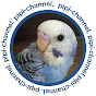 pipi-channel