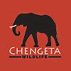 Chengeta Wildlife