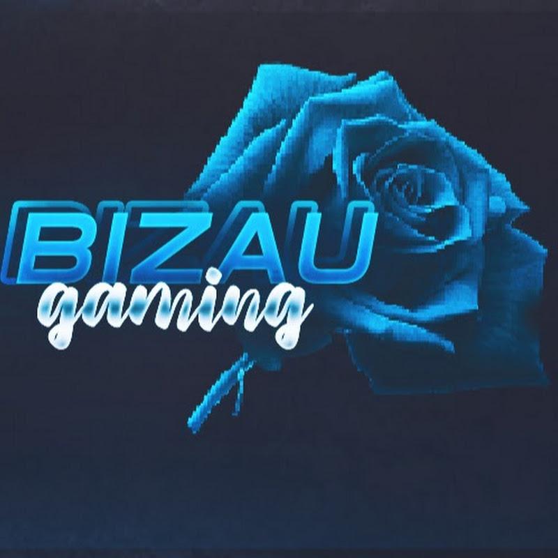 BizauGaming (bizaugaming)