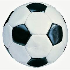 Futbolpasionmundial3