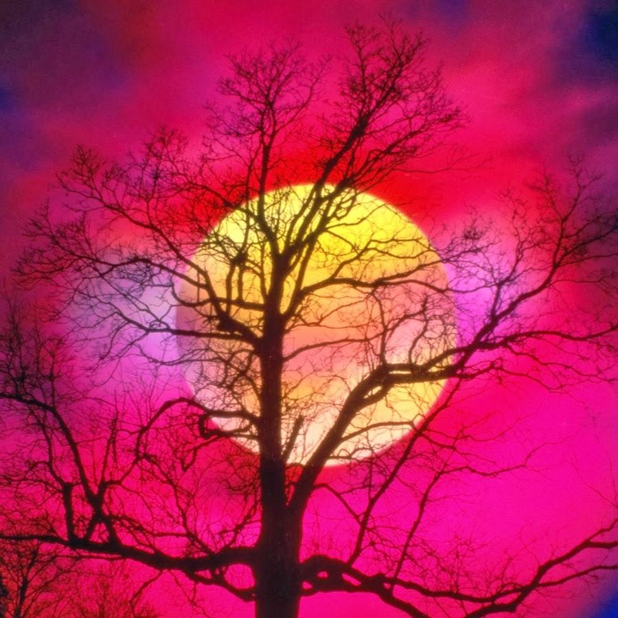 Shagajoa youtube for Sfondi desktop tramonti mare