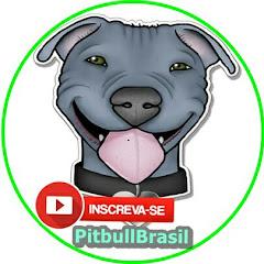 PitBull Brasil