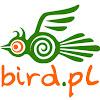 BirdService
