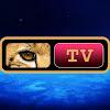 PROJECT CAMELOT TV NETWORK LLC