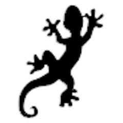 Lucky Salamander