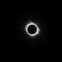 ПРОГНОЗ MMA TV