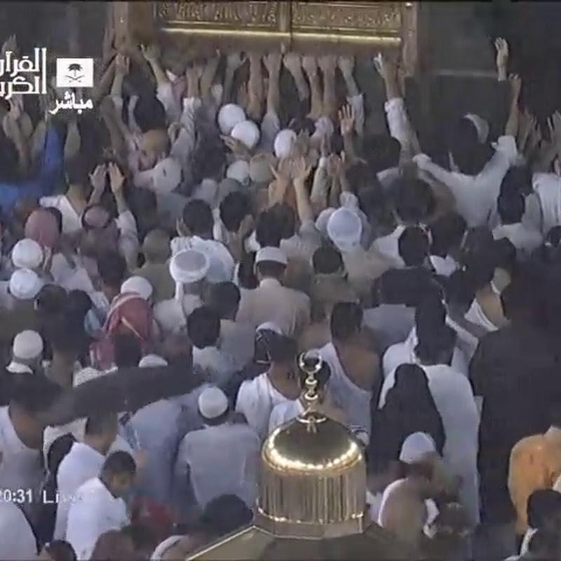 muslim242