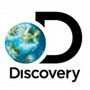 All Animals Discovery