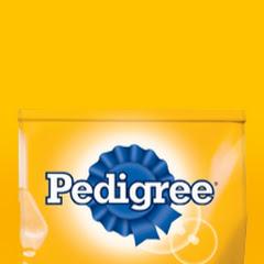 Pedigree MX