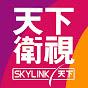 Sky Link TV 天下衛視官方頻道