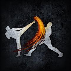 The Modern Martial Artist
