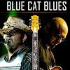 BlueCatBlues