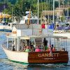 Gansett Cruises
