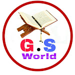 G.S World Net Worth