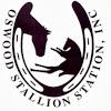 Oswood Stallion Station