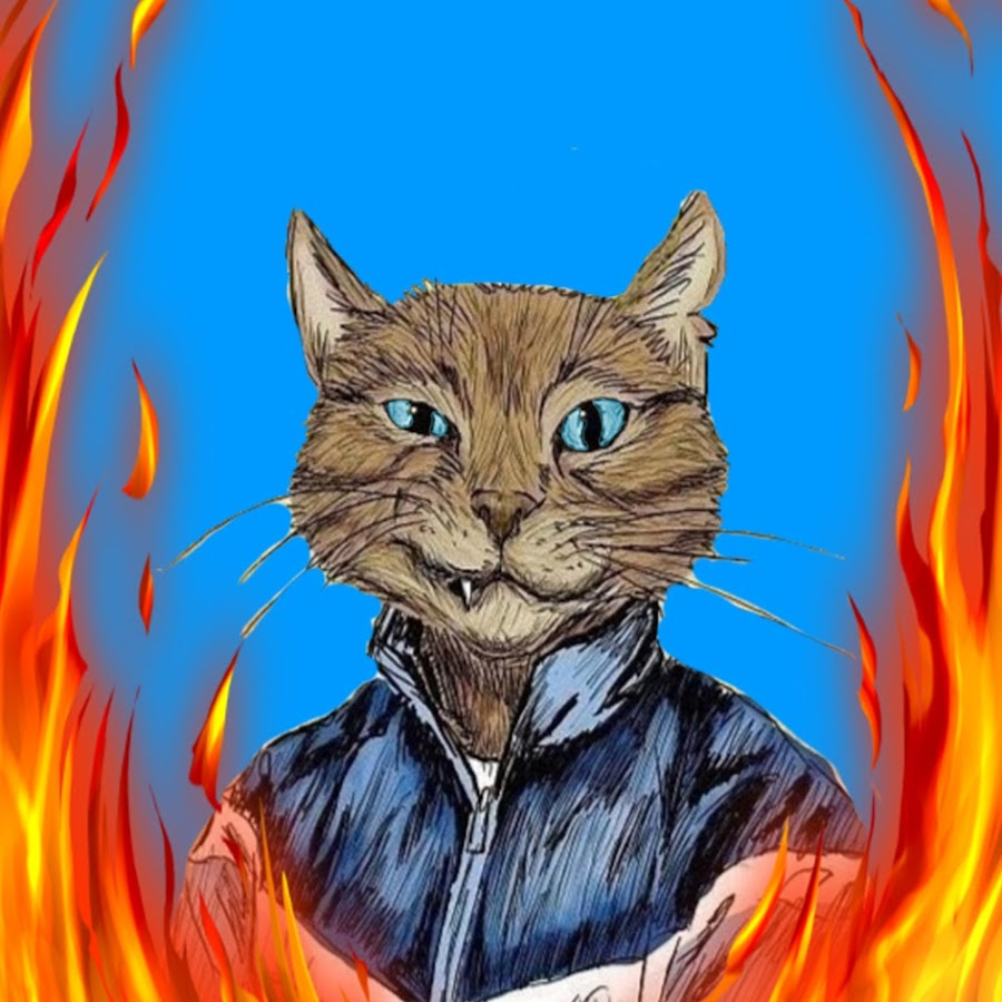 DeNvEr CAT