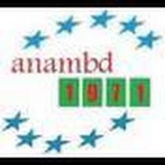 anambd1971