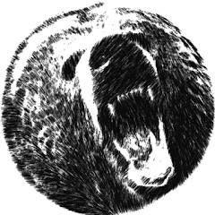 Trap Bear